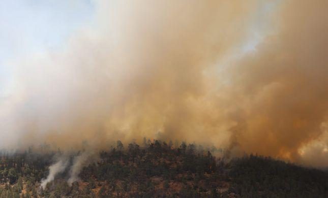 במקביל לשריפה בירושלים: מספר שריפות פרצו בשומרון