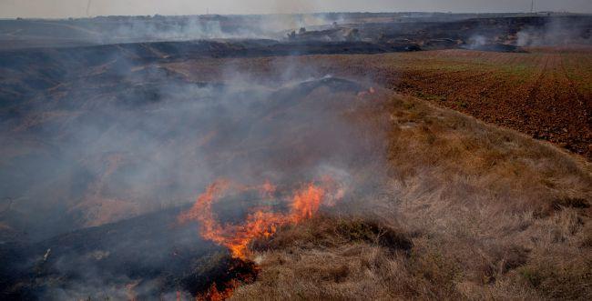 20 שריפות בעוטף עזה כתוצאה מטרור הבלונים