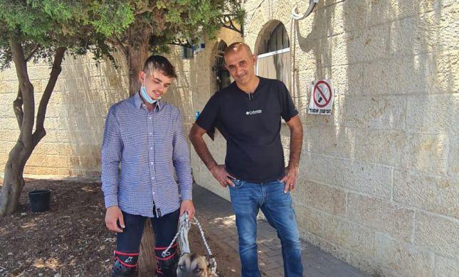 חודש אחרי שנגנבה: השוטרים החזירו את הכלבה גסי