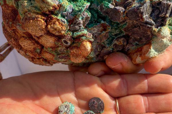 עשה קמפינג בחוף הים ומצא מטמון בן 1,700 שנה
