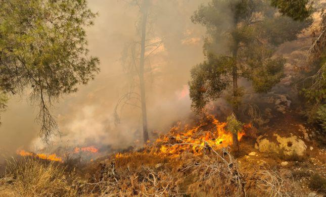"""""""מספר מוקדי הצתה"""" • שוב שריפה ביער גבעות"""