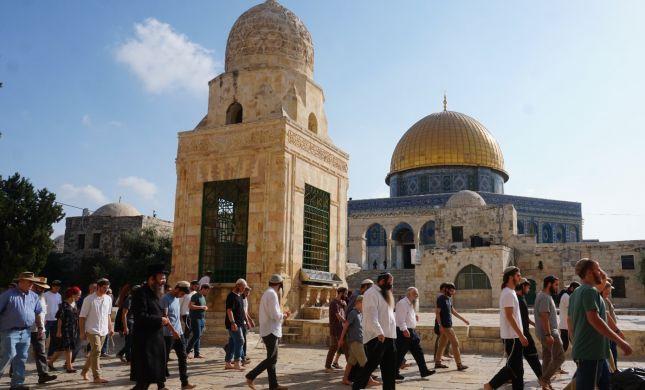 תקדים: אושרה תפילה יהודית בהר הבית