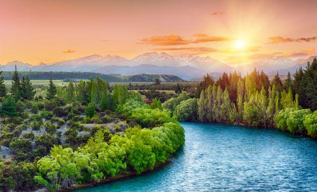 סוכות בניו זילנד: איך להשיג סוכה וארבעת המינים בסגר?