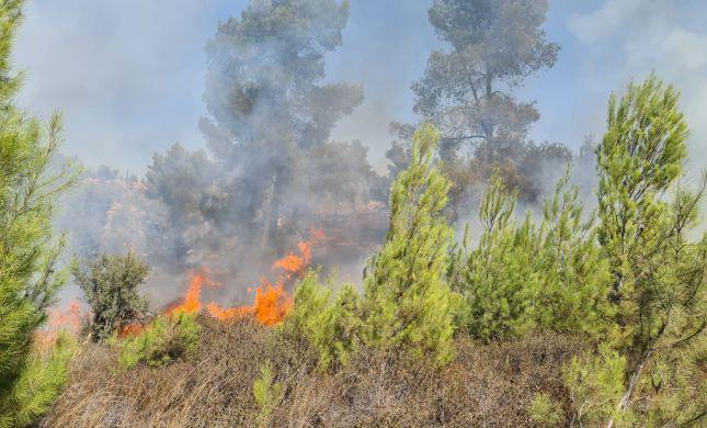 השריפה ביער גבעות: ממצאים מעידים על הצתה