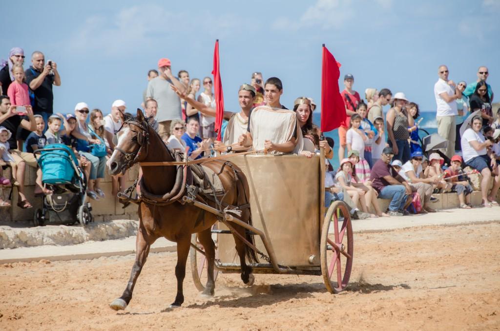 סוסים בהיפודרום - צופית דמרי (4)
