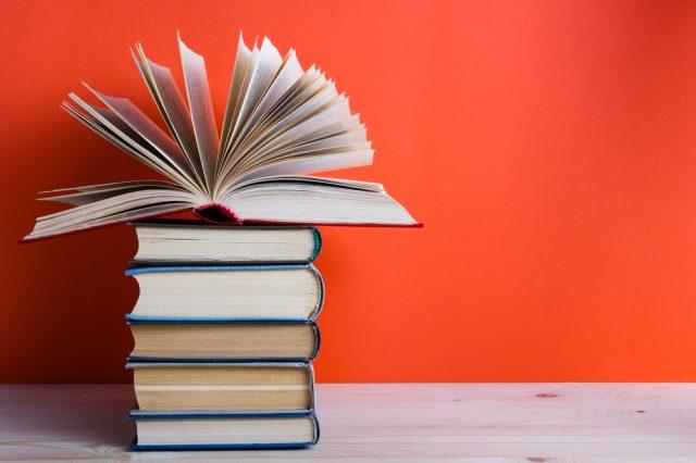 7 ספרים ב100 זו אחלה סיבה למלא את הספרייה הפרטית שלנו (צילום:שטארסטוק)