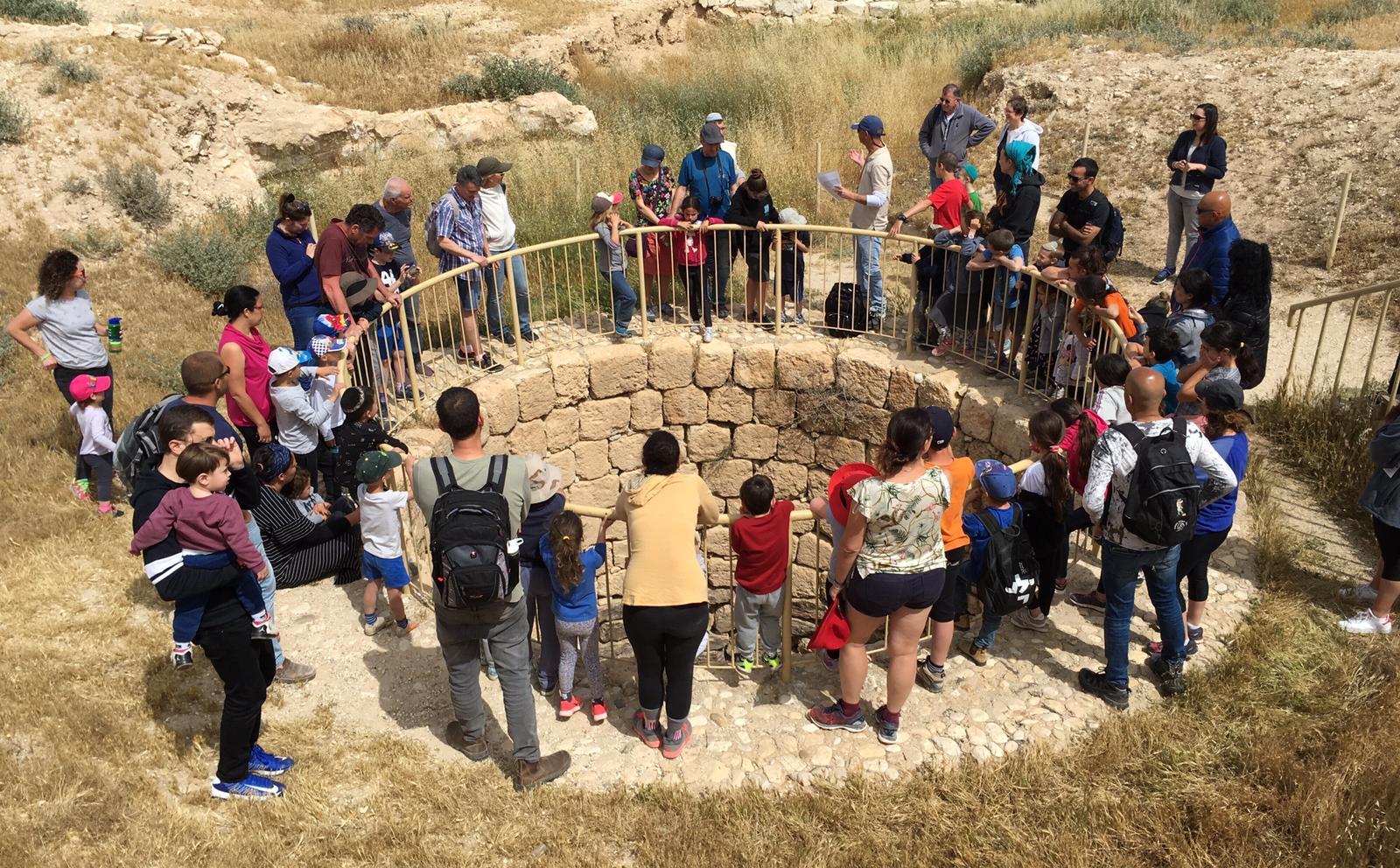 תל ערד (צילום: אורי ארליך/ רשות הטבע והגנים)