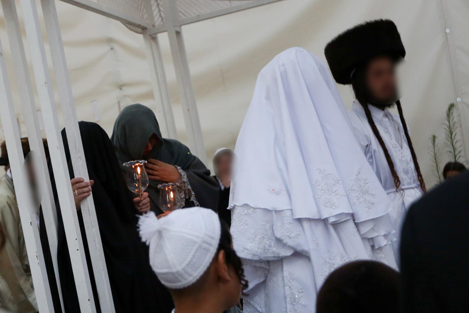 (צילום: חיים גולדברג\כיכר השבת)